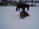 leden 2010_7